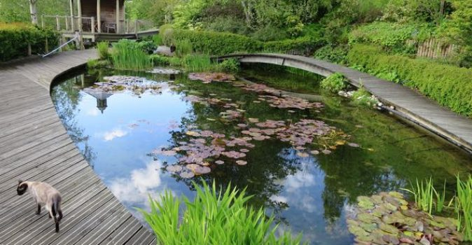 Scotland's Gardens marks 85th anniversary with 66 new gardens opening their gates to the public