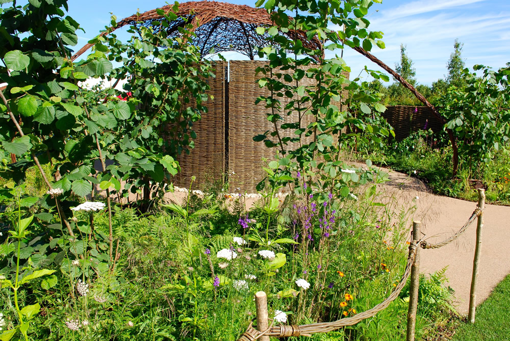 Women's health charity show garden to get a helping hand from Norwegian Log
