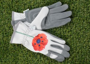 Chelsea glove