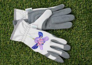 Malvern glove