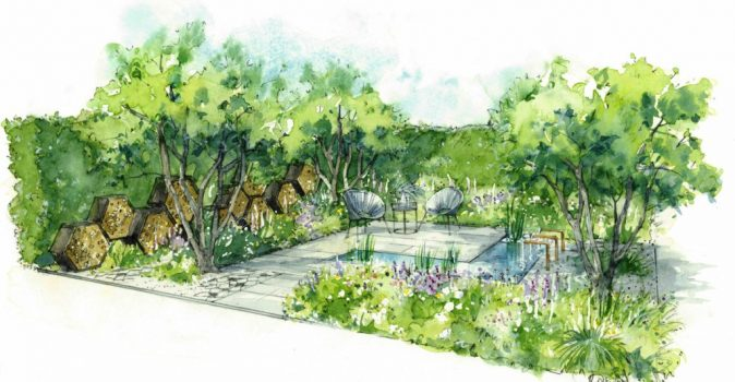 Contemporary bee-friendly garden for designer's debut at RHS Hampton